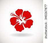 red hibiscus flower on white... | Shutterstock .eps vector #340267877