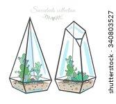 two geometric glass terrariums... | Shutterstock .eps vector #340803527