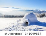 marvelous huge white snowy hut  ... | Shutterstock . vector #341049887