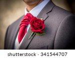 groom   Shutterstock . vector #341544707