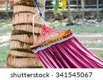 Small photo of hammock lash up on coconut tree
