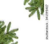 Fir Branches Border On White...