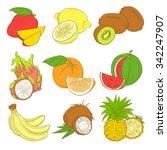 vector illustration outline... | Shutterstock .eps vector #342247907