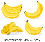 Vector Banana. Bunches Of Fres...