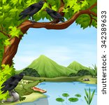 crows and crocodile by the... | Shutterstock .eps vector #342389633