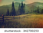 carpathian mountains summer... | Shutterstock . vector #342700253