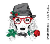 Dog Cocker Spaniel In Elegant...