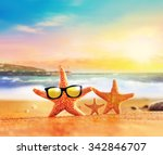 Family Of Starfishes On The...