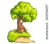 illustration of a closeup tree... | Shutterstock . vector #342956057
