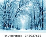 Winter Scenery  Frosty Trees I...