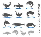 whale set. vector | Shutterstock .eps vector #343269587