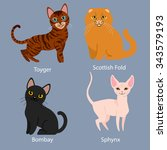 Set Of Cartoon Cats With...