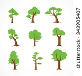 tree design elements  ... | Shutterstock .eps vector #343905407