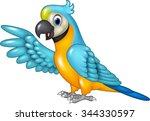 cartoon funny macaw presenting... | Shutterstock .eps vector #344330597