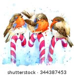 Bird Illustration. Winter Bird...