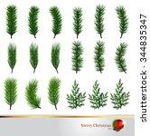 pine tree branch of christmas... | Shutterstock .eps vector #344835347