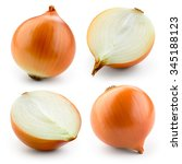 Onion Bulb Isolated On White....