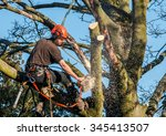 Tree Surgeon Hanging From Rope...