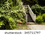 stairs in the woods | Shutterstock . vector #345711797