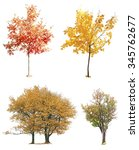Autumnal Trees Isolated On White