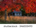autumn foliage frames this old... | Shutterstock . vector #346033493