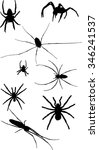 illustration with eight spider... | Shutterstock .eps vector #346241537