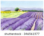 lavender blossom   floral field ...   Shutterstock . vector #346561577