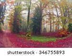 early morning in the forest... | Shutterstock . vector #346755893