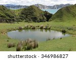 a landscape on a sheep farm ... | Shutterstock . vector #346986827