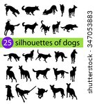 Stock vector a set of pet dog silhouettes the dog playing jumping and walking 347053883