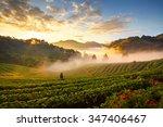 photographers were... | Shutterstock . vector #347406467