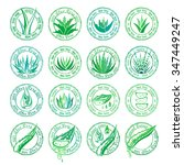 aloe vera design elements.... | Shutterstock .eps vector #347449247
