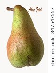 Small photo of Pear Cultivar Abate Fetel