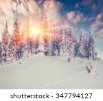 colorful winter sunrise in the... | Shutterstock . vector #347794127