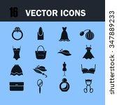 set of  sixteen beauty and... | Shutterstock .eps vector #347889233