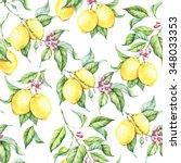 seamless watercolor pattern... | Shutterstock . vector #348033353