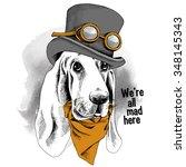 Portrait Funny Dog Basset Houn...