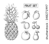 vector hand drawn fruit set ... | Shutterstock .eps vector #348271997