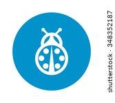 Ladybird Icon. Ladybird Icon...