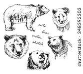 hand drawn vector illustration... | Shutterstock .eps vector #348392303