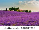 Lavender Field With A Farm And...