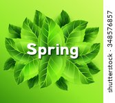 spring illustration with bunch... | Shutterstock .eps vector #348576857