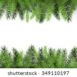 Arranged Green Fir Tree...