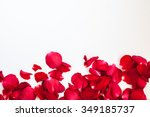 Stock photo rose petals on the white background 349185737