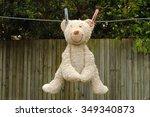 Teddy Bear Hanging On Washing...
