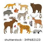 set of forest animals | Shutterstock . vector #349682123