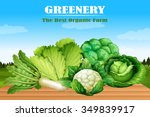 many kind of green vegetables... | Shutterstock .eps vector #349839917