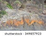 spiky beach swansea tasmania...