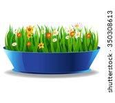 fresh spring green grass in a... | Shutterstock . vector #350308613