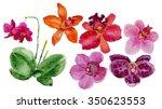 watercolor illustration of... | Shutterstock . vector #350623553
